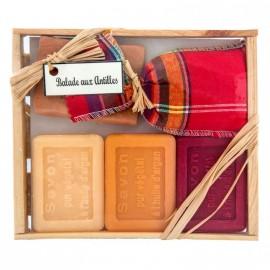 Coffret de 3 mini savons carrés Litchi, Mangue des îles, Fleur d'orange