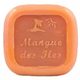 Savon pur végétal Mangue des iles,80g
